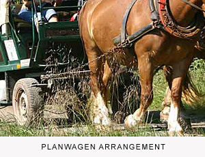 Planwagen Arrangement