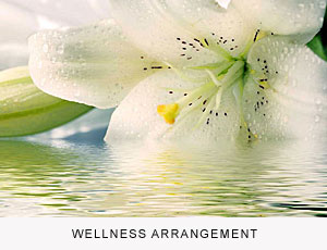 Wellness Arrangement