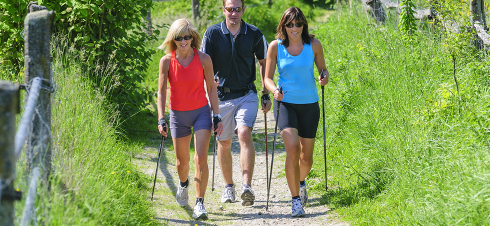 Nordic Walking Arrangement